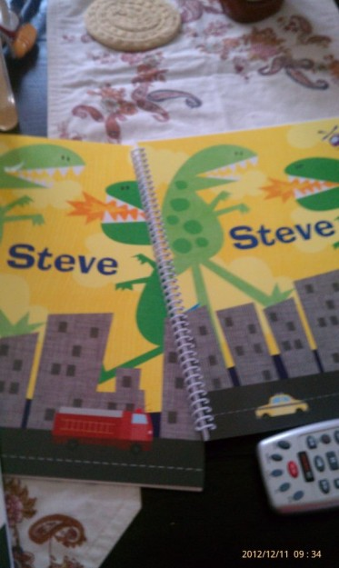 steve items