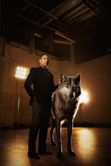 Jungle Book Wolf